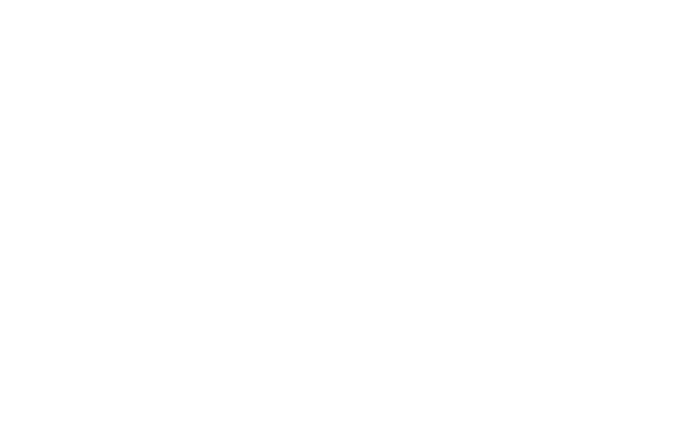 Buskowitz Energy White Logo